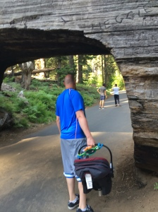 Exploring Sequoia National Park with D at 7 months old.